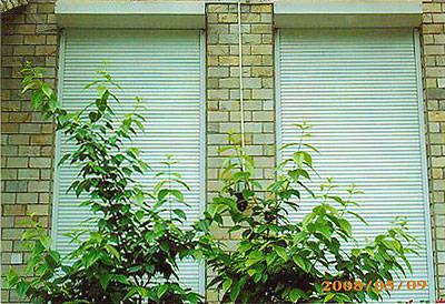 成都欧式卷帘窗 防盗装饰 隔音隔热产品图片,成都欧式卷帘窗 防盗装