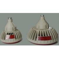 BZD118-40b1H防爆免维护低碳LED照明灯
