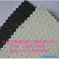单糙面HDPE土工膜、双糙面HDPE土工膜