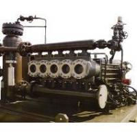 供应英国原装进口页岩气开采注入泵