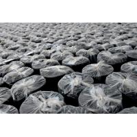 自粘(PETBAC)聚合物改性沥青防水卷材