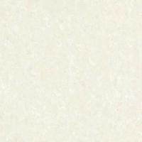 卡诺尔瓷砖抛光砖
