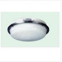 【专业生产】CPD2-1 双泡蓬顶灯