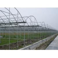 温室大棚管、镀锌大棚管、蔬菜大棚管、