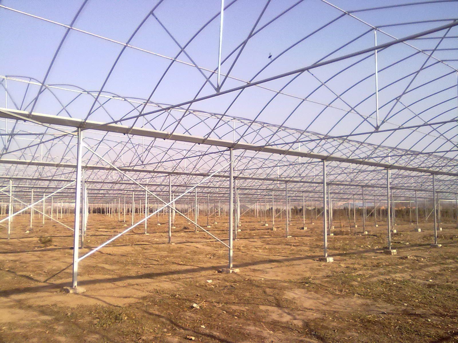 连栋大棚 蔬菜大棚 温室大棚 大棚方管 连体大棚