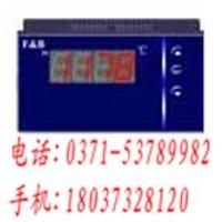 XMZ5010S/XMZ5020P,数显表,福光百特工控