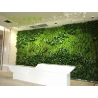 创意仿真绿色植物墙