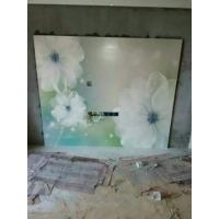 白莲花3d立体壁画平面精雕幻彩电视背景墙