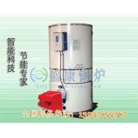 立式燃气热水锅炉 30万大卡低氮热水锅炉