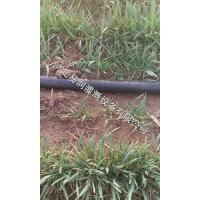 河北玉米微喷带水肥一体化 喷水带价格