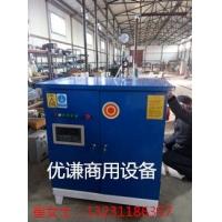 电蒸汽锅炉 蒸汽发生器