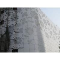 医院门诊大楼外墙雕刻镂空铝单板