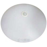 LED感应吸顶灯