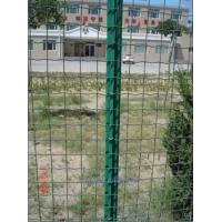 草原网,牛栏网,校园护栏,安平海拓丝网