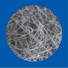 Pall玻璃纤维滤膜