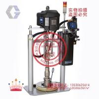 固瑞克D200油墨输送泵