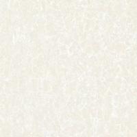 佛山槁熇陶瓷600*600优等地砖抛光砖布拉提