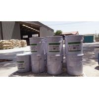 SS-E防水涂料 混凝土基面防水保護涂料
