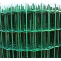浸塑荷兰网,养殖护栏,养鸡围栏网,安平荷兰网