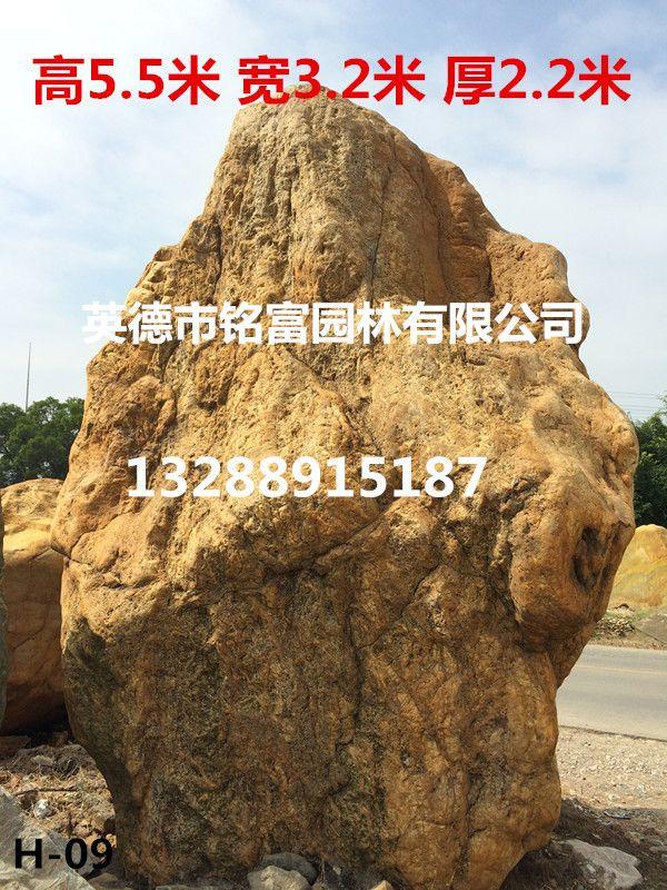 精品黄蜡石 广东园林假山石 刻字黄蜡石 草地点缀石