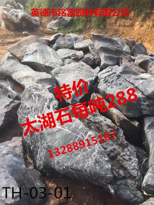 优质太湖石 小型太湖石 园林景观石假山石