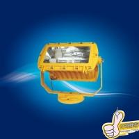 BFC8100防爆泛光灯 400W厂用防爆泛光灯
