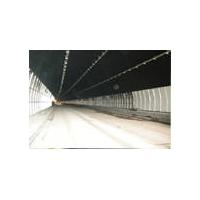 木蜡油隧道桥梁专用涂料