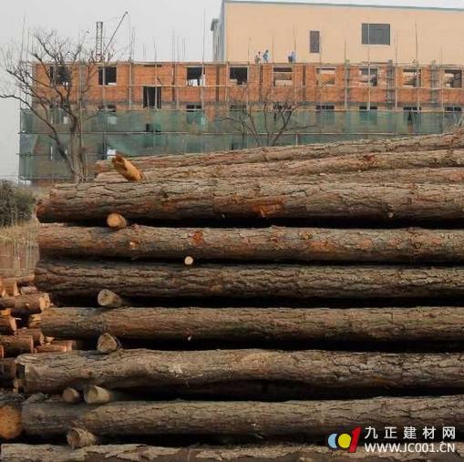 成都印象木业 优质松木 s-03