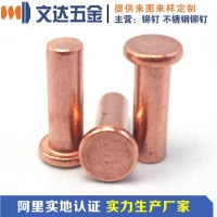 供应紫铜铆钉、T2紫铜半空心铆钉、提供紫铜铆钉价格查询