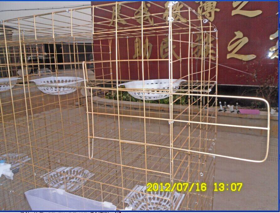 广式鸽笼 养殖鸽笼 河北鸽笼 鸽子笼图片
