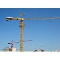 专业生产优质塔吊、QTZ250塔吊、另承接定做标准节