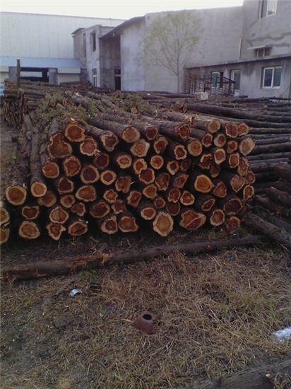 红心木材图片大全