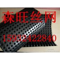安平县平塑料排水板生产厂家 排水板价格