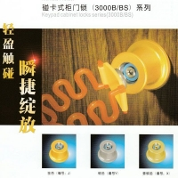 南京休闲设备-韩国TEL电子锁-碰卡式柜门锁3008B/BS