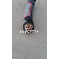 福州厦门KVVP控制电缆KVVRP屏蔽信号线