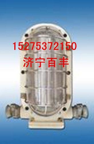 DGC12 127L型矿用隔爆LED支架灯