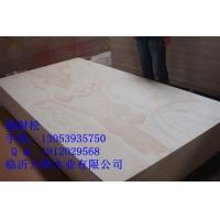 高档环保杨木芯CARB P2认证胶合板