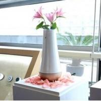 郑州智能家居 物联智能花瓶 集成多种传感器 智能手势控制