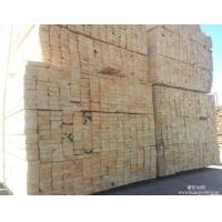 白松木方/4米长白松板材-吊顶用3*4白松木方