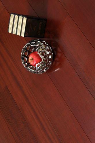 孪叶苏木(南美柚()
