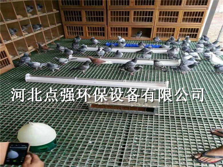 养殖场排污漏粪玻璃钢格栅-大同养殖玻璃钢格栅