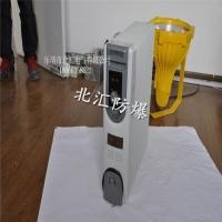 BDR防爆电热油汀   密闭式电取暖器2000kw11片
