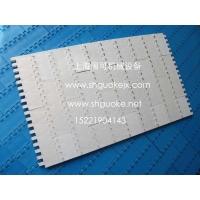 上海优质OPB平板网带/OPB链网/PP塑料网链/POM塑料