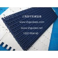 品牌1100网带/知名1100链网/优质1100塑料网带