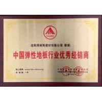 中国弹性地板行业优秀经销商