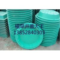 福泰CJY-700绿化井盖、草坪井盖、植草井盖