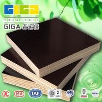 内蒙古建筑模板供应内蒙古胶合板|黑膜板
