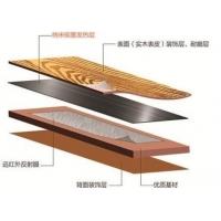 碳纤维低温发热纸