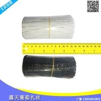 一流产品葡萄绑扎丝 塑料丝绑蔓枝条扁扎线包胶绑缎带线捆架扎丝