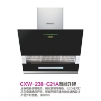 CXW-238-C21A智能升降